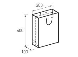 Вертикальный бумажный пакет В300x400x100