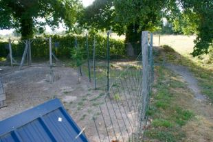 Chicken run divided to let the grass grow