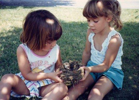 Spring Forward Lessons Childhood