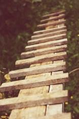 Chicken coop stairs