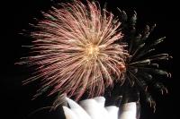 Fireworks in Lehigh Valley 2014