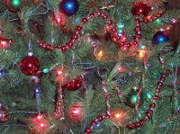 Event: Lights In The Parkway - Dec 21 @ 5:00pm