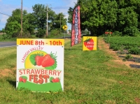 Event: The 2018 Lehigh Valley Strawberry Fest June 8th, 9th,10th - Jun 8-10