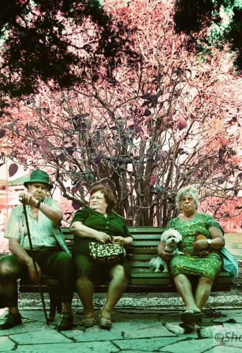 Folks on a Park Bench