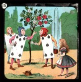 Alice Sihirli Fenerde 15