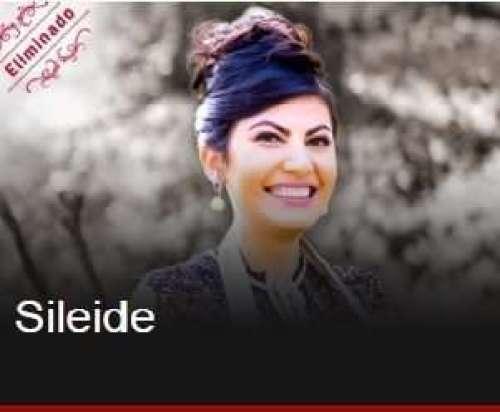 SILEIDEBAKE Title category