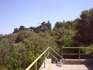 the sun deck (roof - balcony)