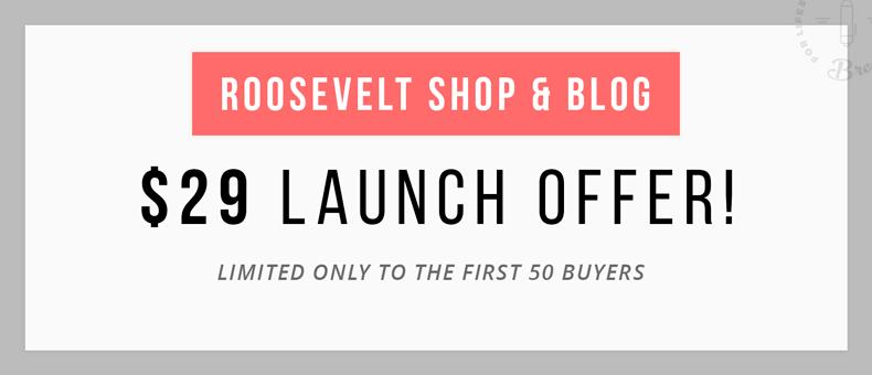Roosevelt - Responsive WordPress Blog Theme - 4