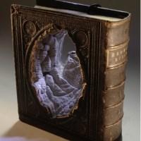 Les Sculpteurs De Livres !