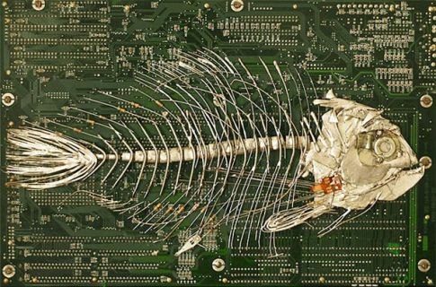 Modern-Fossils-and-Circuit-Board-by-Peter-McFarlane-16
