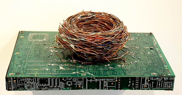 Modern-Fossils-and-Circuit-Board-by-Peter-McFarlane-18