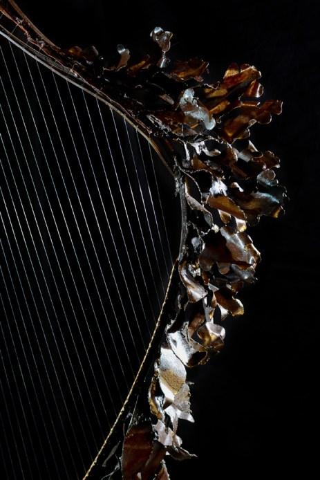 Thierry-Chollat-harpe2