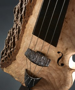 Thierry-Chollat-violoncelle-ferbois2