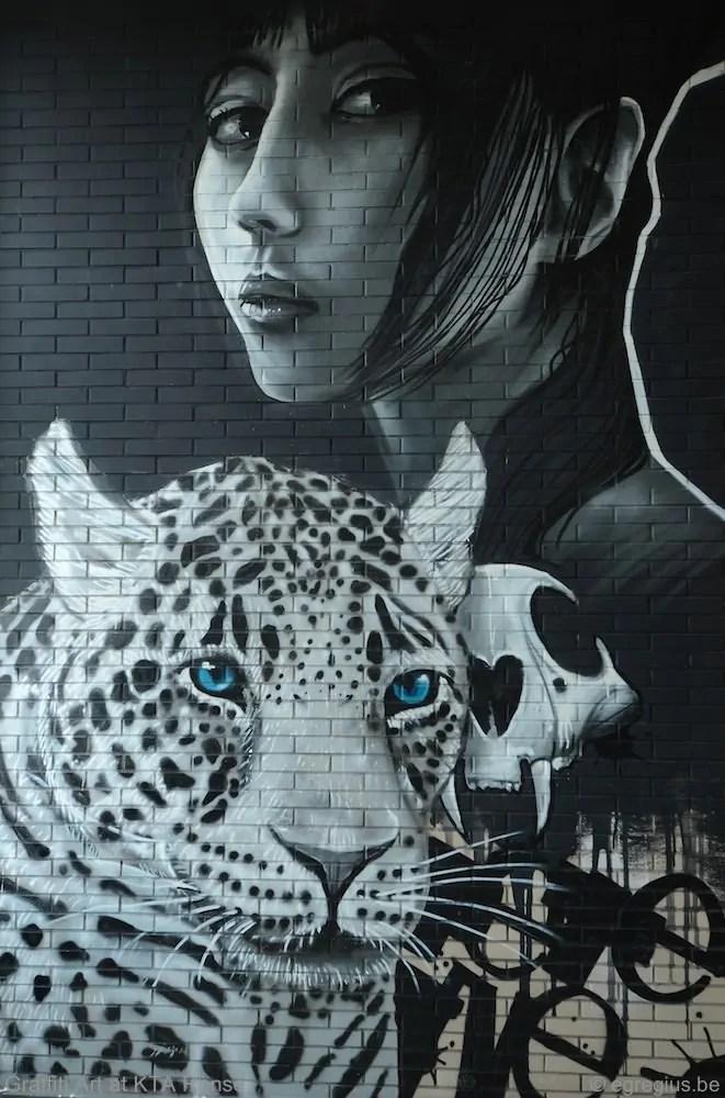 Graffiti Art 3
