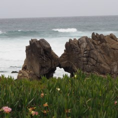 "The ""Kissing Rocks"" in Pacific Grove."