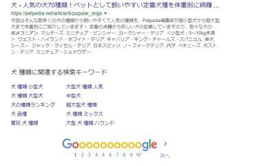 【GoogleChrome】自動で次のページを表示してくれる便利拡張機能!AutoPagerize