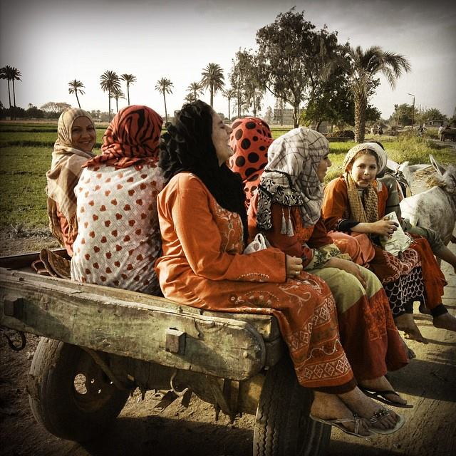 Egyptian women laugh as they ride back home on a donkey cart after a hard days work in the fields in Giza. Photo by Tara Todras-Whitehill