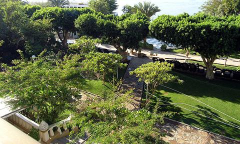 Gardens in the Novotel