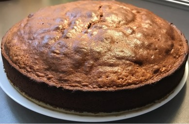 Торт Неженка _9