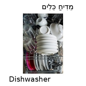 How do you say dishwasher in Hebrew?