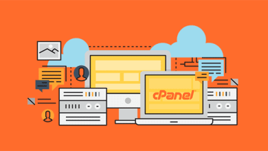 Photo of 10 most important modules with cPanel