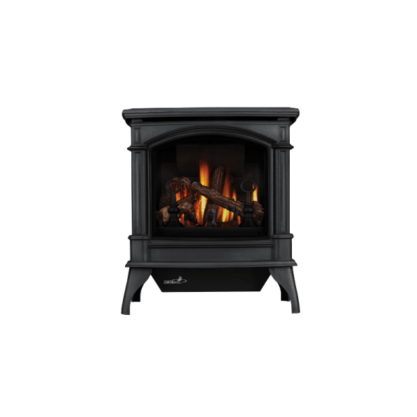 CDV600 DIRECT VENT FREE STANDING STOVE