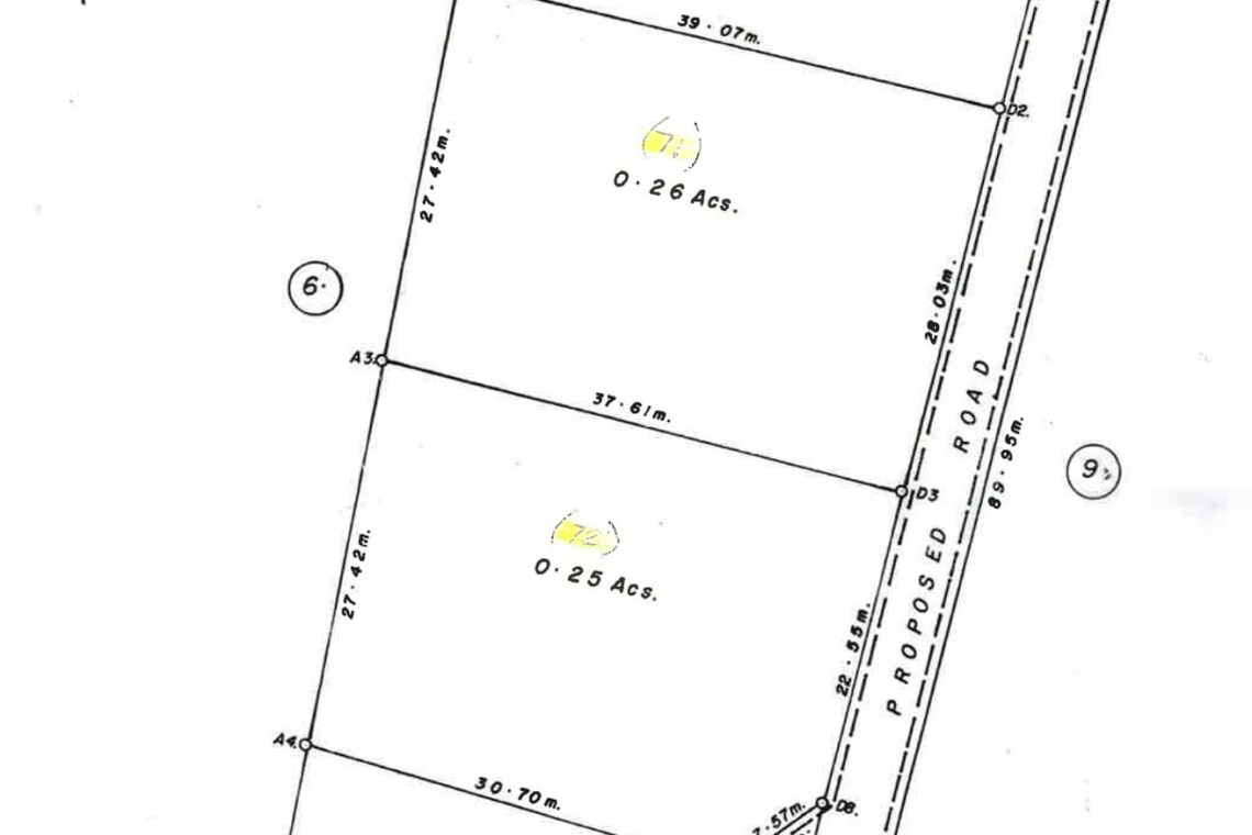 Belmont Land Survey Plan