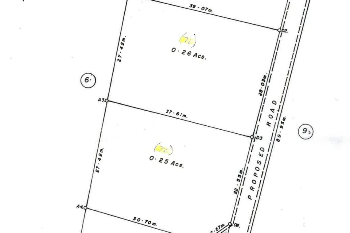 Belmont Land Survey Plan