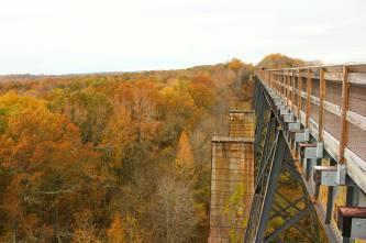 Autumn Crossing