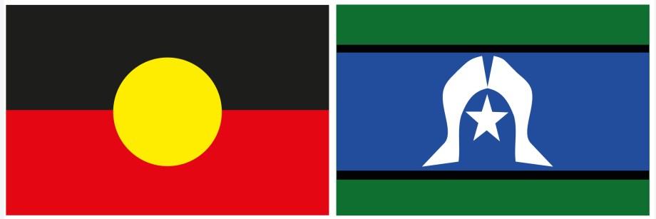 Image result for ABoriginal Torres Strait Islands Flag