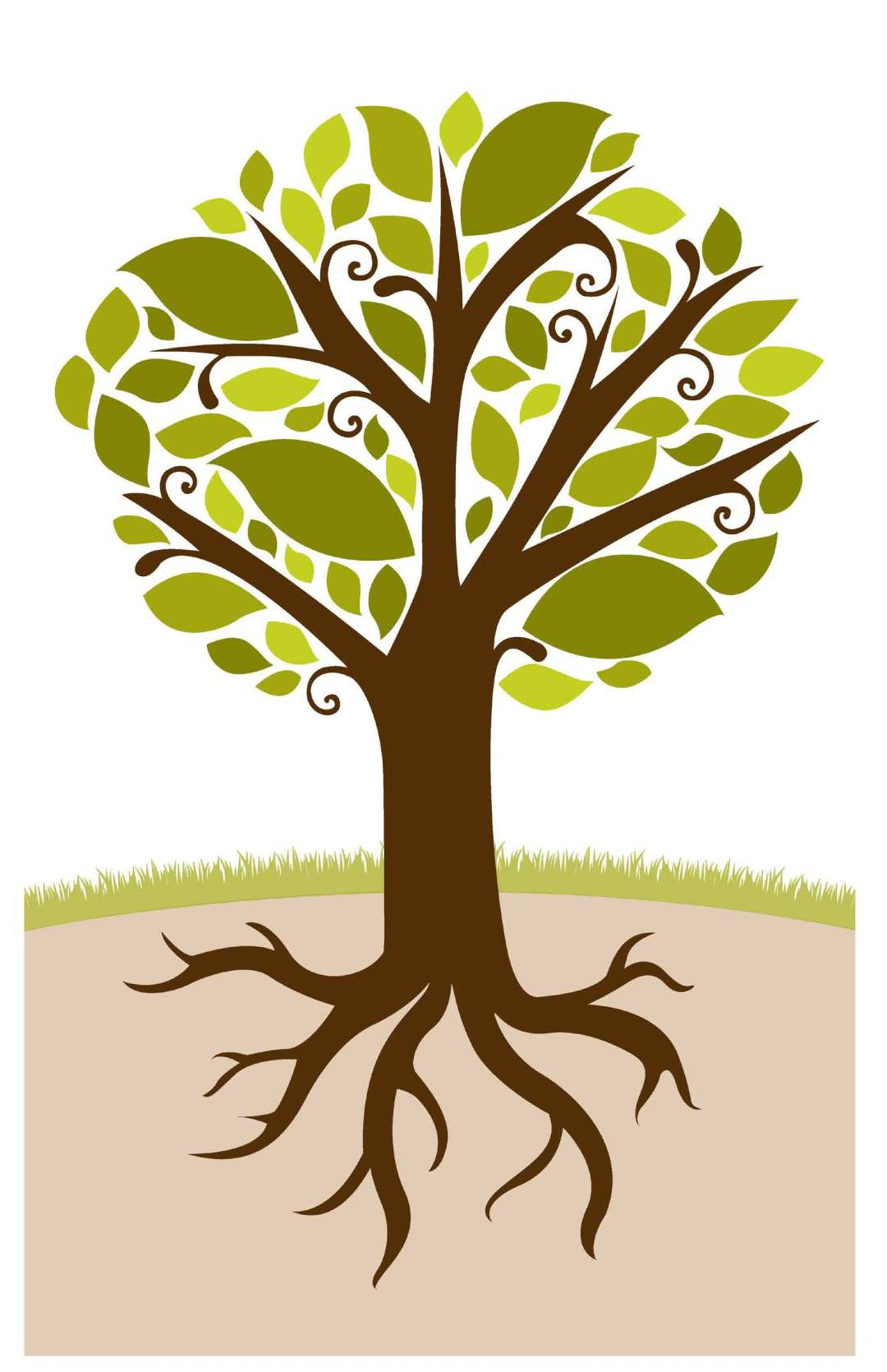 protection of trees on