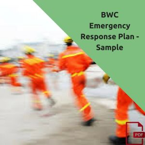 free basic template for emergency action plan