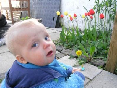 Casper i haven