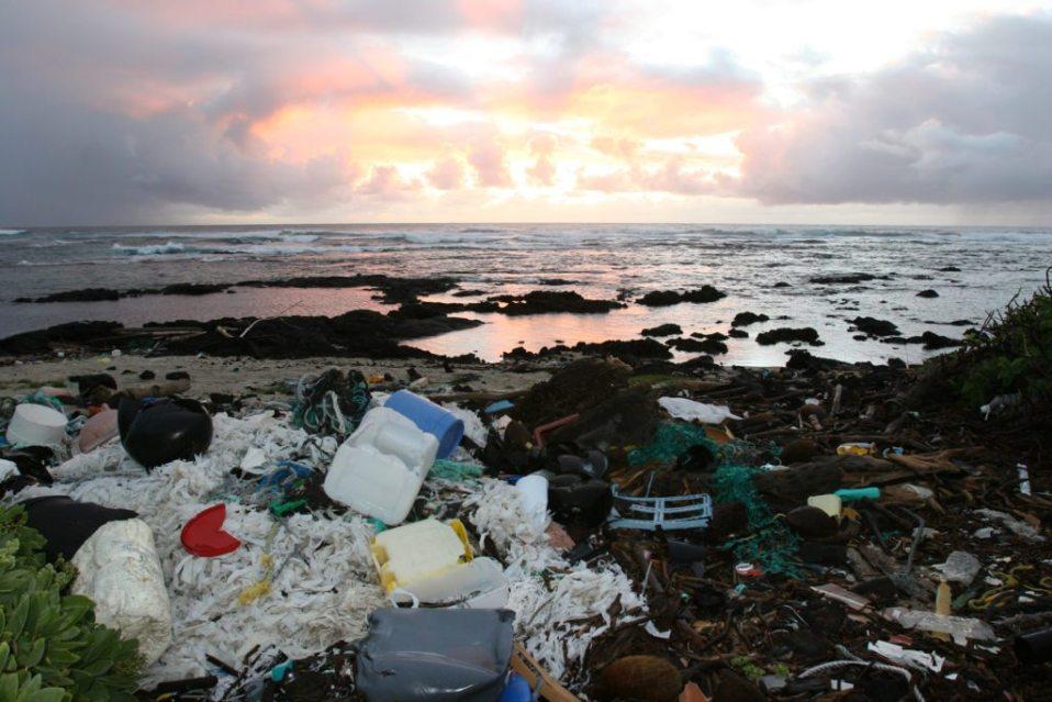 Kamilo Polluted Beach Sunrise