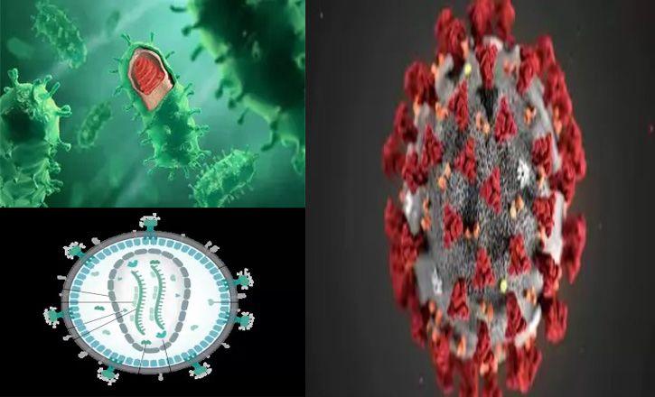 most dangerous virus