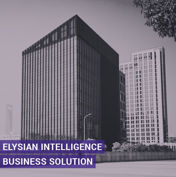 Elysian Intelligence Business Soloutions