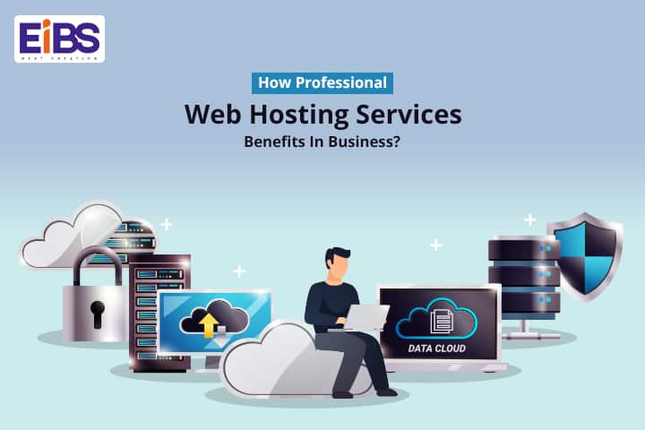 Professional Web Hosting Services