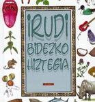 irudi-bidezko-hiztegia