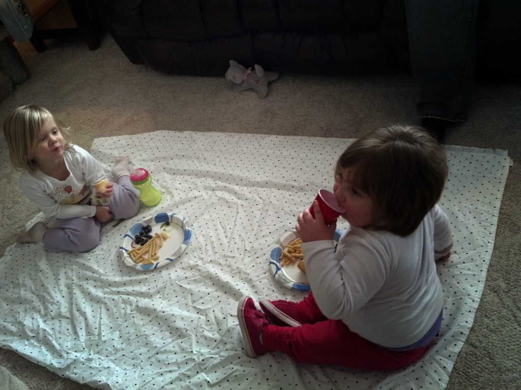 Olivia and Namine enjoy a picnic in the living room. It was too cold outside, anyway.