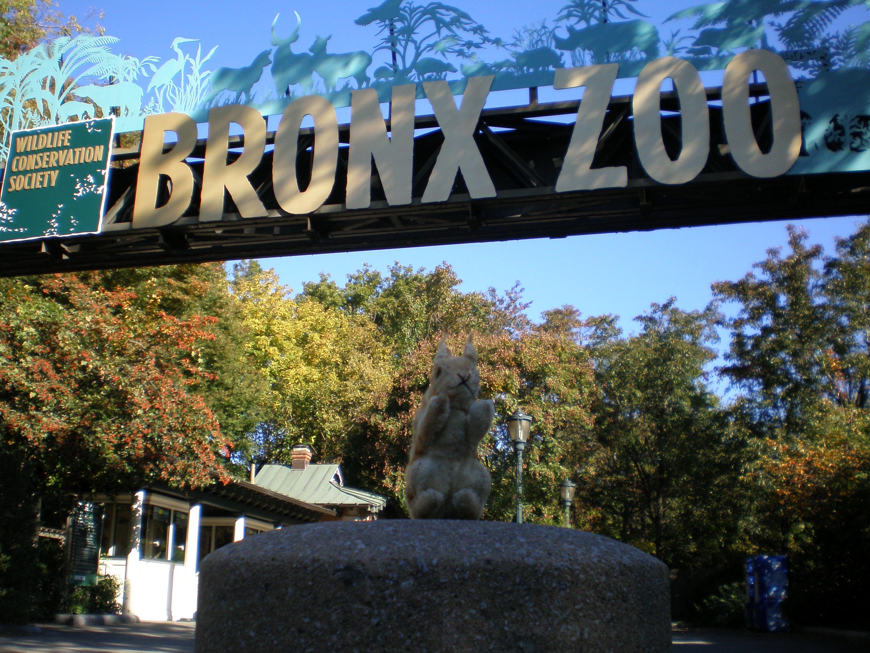 Eich im Bronx Zoo