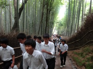 15-06-2016_kyoto_bamboo-grove_07