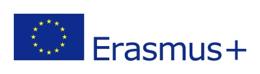 erasmus+flag