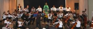 """Das Streichorchester der Musikschule Schleiden will """"Peter und der Wolf"""" darbieten. Foto: Musikschule Schleiden"""