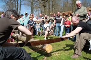 """Bei der """"Holzhauermeisterschaft"""" sollen sich Erwachsene an der Säge beweisen dürfen Bild: Eifeler Presse Agentur"""