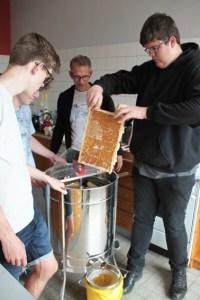 Die ersten Rahmen mit den Honigwaben werden in die Schleuder gefüllt. Bild: Michael Thalken/Eifeler Presse Agentur/epa