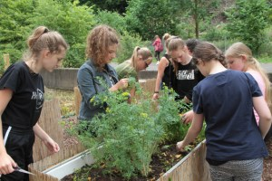 Die Schülerinnen und Schüler der Schulgarten-AG setzen die Hochbeete vor der Ferienzeit nochmal instand. Bild: Michael Thalken/Eifeler Presse Agentur/epa