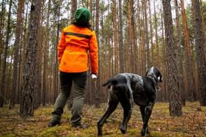 Dürre, Hitze und Stürme setzen dem Wald zu. Die IG BAU fordert mehr Forstpersonal, um den klimagerechten Umbau heimischer Wälder voranzubringen. Bild: IG Bau
