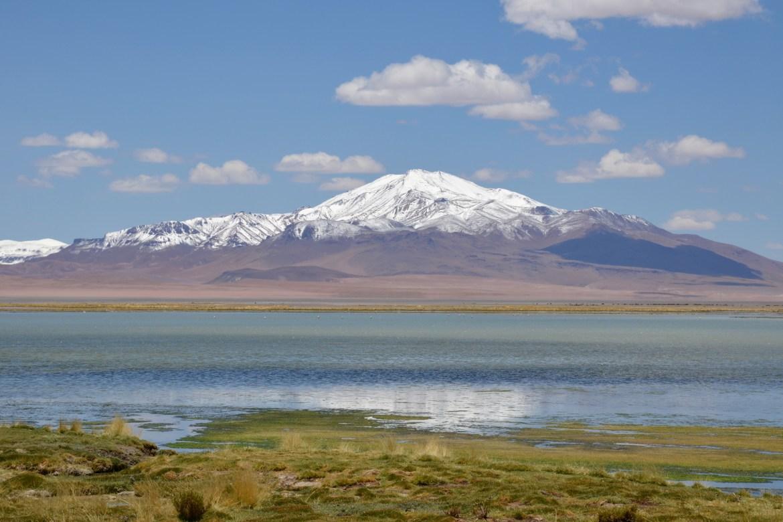 Atacama Wüste Salar Tara