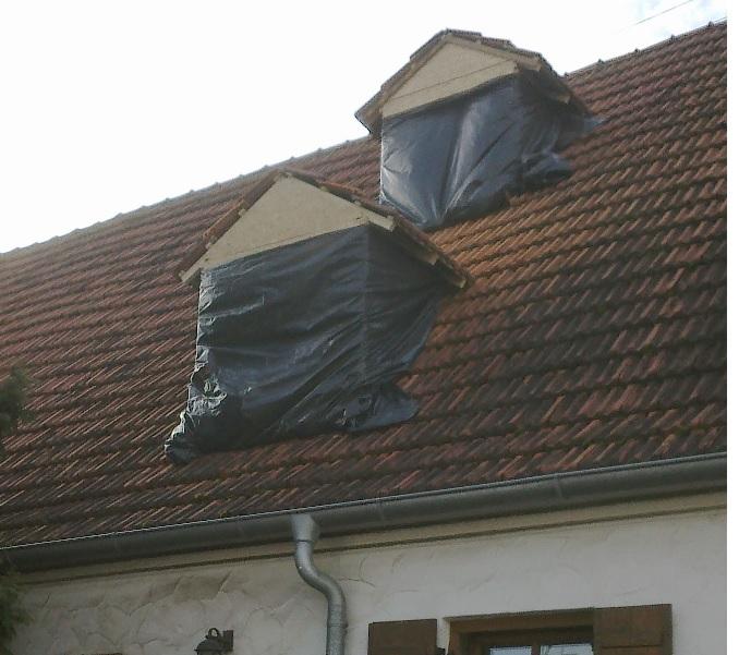 Super Gaube im Satteldach - Alternative zum Dachfenster - eigenkonstrukt.de ZF87