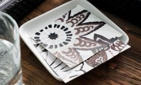 zanz coasters blog